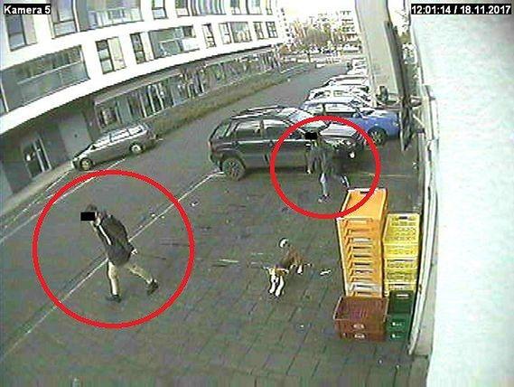 Uczniowie ukradli szczeniaka sprzed sklepu. Nagrały ich kamery monitoringu