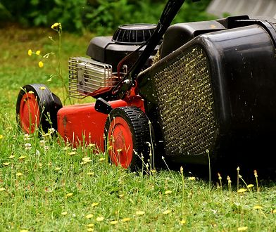 Dobrze dobrana kosiarka ułatwi i przyśpieszy koszenie trawy