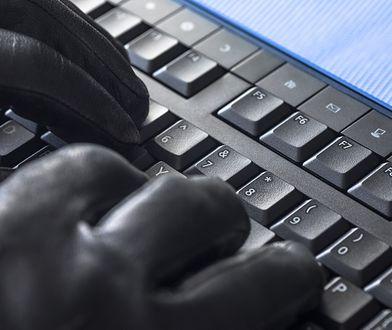 Policja ostrzega przed oszustami w sieci