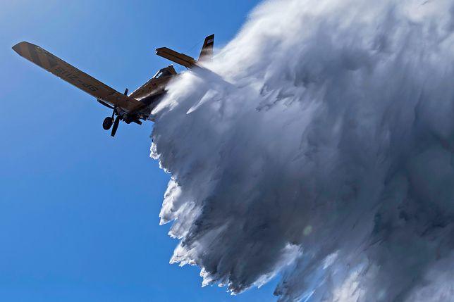 Pięć zrzutów wody z samolotów gaśniczych pomogło w walce z pożarem lasu pod Warszawą