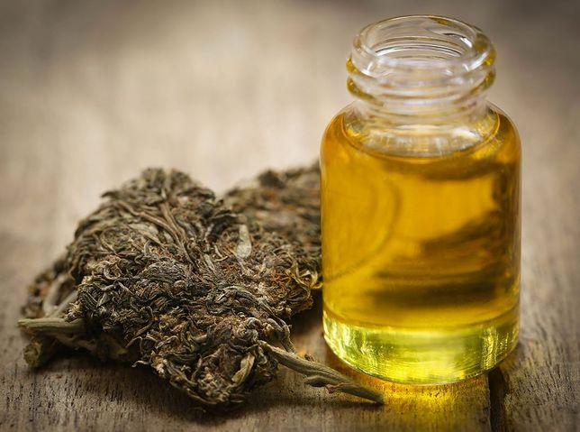 """Eksperci z warszawskich placówek medycznych: """"Marihuana lecznicza przydatna w leczeniu"""""""