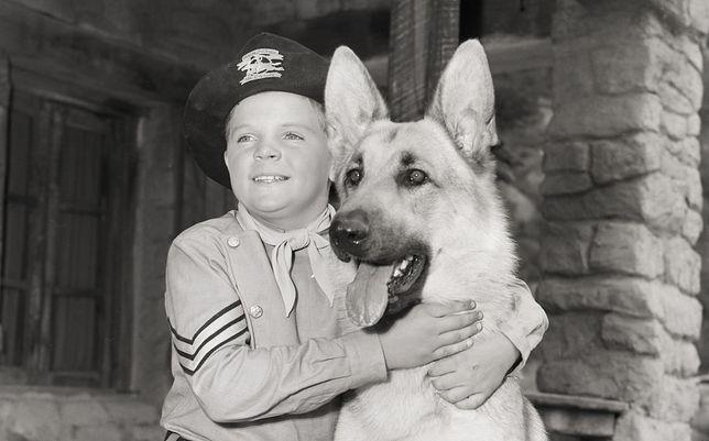 Lee Aaker był gwiazdą w latach 50.