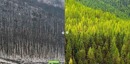 EarthApp pokazuje jak Ziemia będzie wyglądać za kilkadziesiąt lat.