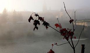 Prognoza pogody na dziś - 15 listopada. Kolejny dzień z niskimi temperaturami. Idzie zima
