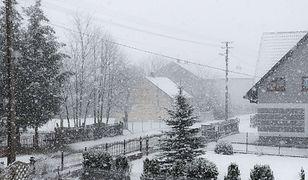 IMGW wydaje ostrzeżenia. Czeka nas silny wiatr, niskie temperatury i intensywne opady śniegu