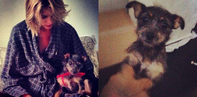 Anja Rubik dostała na urodziny psa!