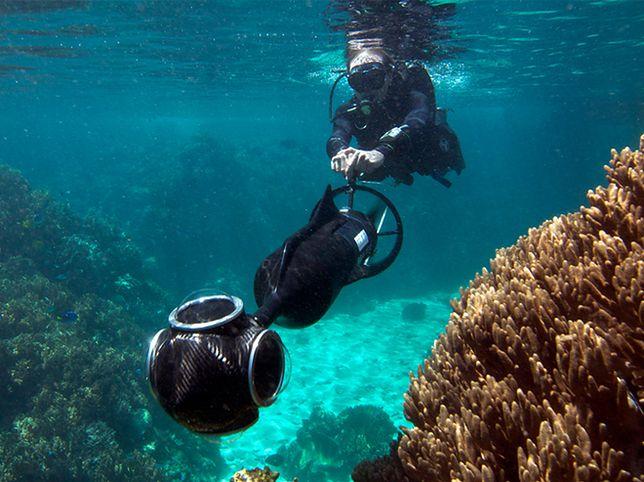 Google Street View: Wielka Rafa Koralowa już wkrótce!