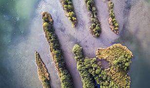 Dolina Baryczy. Niesamowite kształty wysp na Stawach Milickich