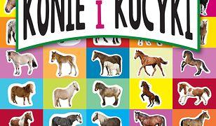 Nauka i zabawa. Konie i kucyki