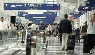 Skandal na lotnisku w Chicago. Śmierć owczarka niemieckiego pozostawionego przez kilka dni bez jedzenia i picia