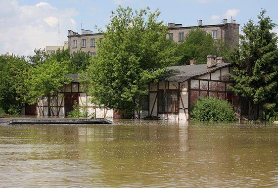 Hydrolog: Warszawa będzie bezpieczna, gdy Wisła osiągnie 600 cm