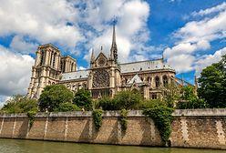 """Koniec marzeń o ogrodzie na dachu. Francuski senat: """"Notre Dame odbudowana we wcześniejszym kształcie"""""""