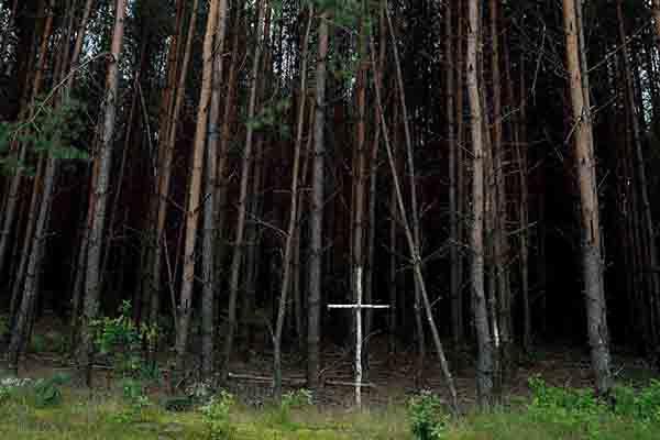 Brzozowy krzyż na skraju lasu przy tzw. trupim polu w rejonie wsi Ostrówki na Ukrainie, gdzie odkryto szczątki zamordowanych Polaków
