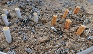 Niedopałki papierosów większym źródłem zanieczyszczeń niż plastikowe słomki. Filtry zabijają zwierzęta i trują dzieci