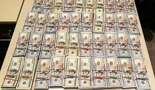 """Pies """"wywąchał"""" prawie 2 mln w gotówce. Pieniądze należały do gangu"""