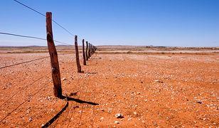 W Australii panują rekordowe upały