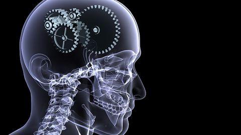 Potrzeba matką... ewolucji? Smartfony kształtują nasze mózgi
