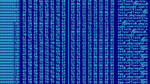 Popularny Orbit Downloader DDoS-ował na zamówienie