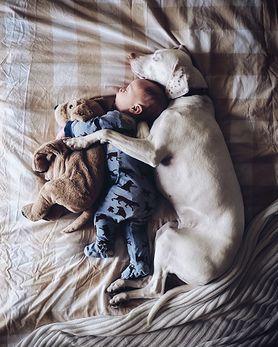 Niezwykła przyjaźń dziecka i adoptowanego psa na zdjęciach