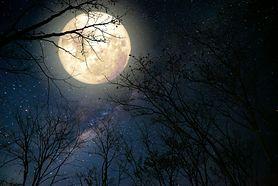 Fazy księżyca – jak wpływają na zdrowie?