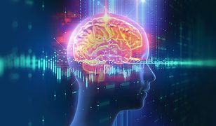 Sztuczna inteligencja będzie rozwijana przez państwo