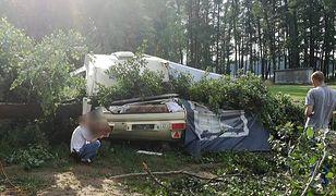 Nie żyje 12-latek, którego na kempingu przygniotło drzewo. Wszczęto śledztwo