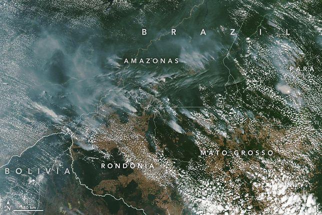 Dym z amazońskich pożarów wyraźnie widać nawet z kosmosu.