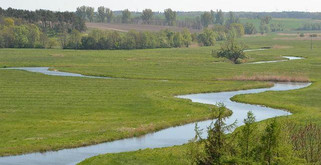 Wielka bitwa z epoki brązu w dolinie rzeki Tollense