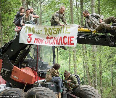Obrońcy Puszczy: To my jesteśmy prawdziwymi patriotami. Kaczyński i Duda powinni siedzieć z nami w Obozie