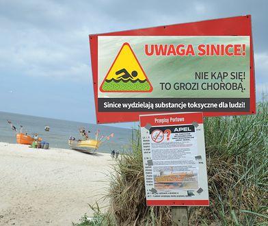 Sinice w Bałtyku - ostrzeżenia.