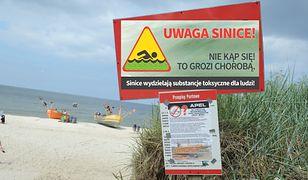 Sinice w Bałtyku. Zamknięto kilkanaście kąpielisk