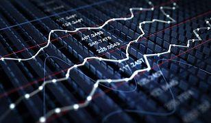 Euler Hermes: gospodarka światowa urośnie w 2014 r. o 2,9 proc.