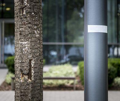 Warszawa. Betonowe słupy latarni wymienione na stalowe. Będzie nowocześnie