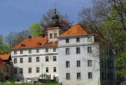 Pałac w Dziwiszowie. Posiadłość warta miliony wystawiona na sprzedaż
