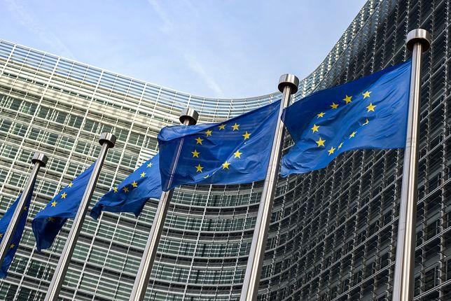 Wybory do Parlamentu Europejskiego 2019 odbędą się 26 maja. Sprawdź, na kogo zagłosują mieszkańcy Łodzi
