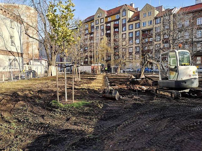 Wrocław. Epidemia nie zatrzymała zielonych inwestycji. Wydano ponad 20 mln zł
