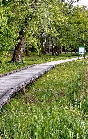 Park zdrojowy to idealne miejsce na spacer