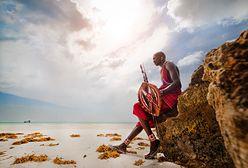 Wycieczka do Kenii – niezapomniane wakacje na safari