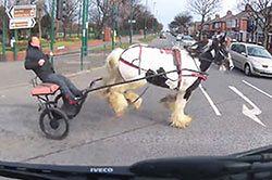 #dziejesiewmoto [296]: zaprzęg na skrzyżowaniu, szeryf na A2 i nieostrożny przestępca