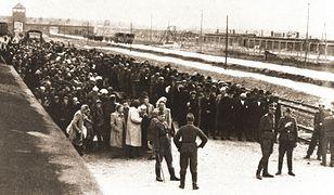 Esesman z pierwszej ławki. Josef Mengele, prymus z Auschwitz