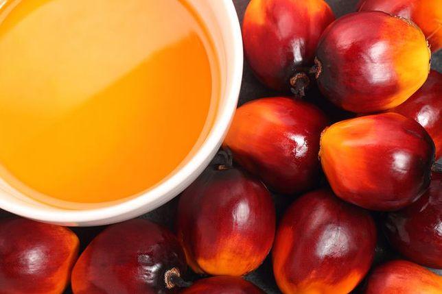 Olej palmowy - źródło tłuszczów nasyconych