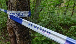 W lesie w gminie Czarny Dunajec znaleziono zwłoki 15-latki