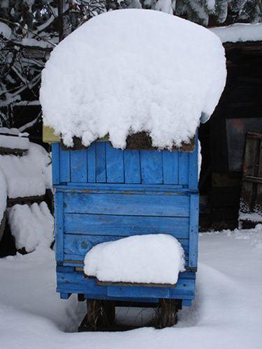 Zima nie ustępuje - zdjęcia Internautów
