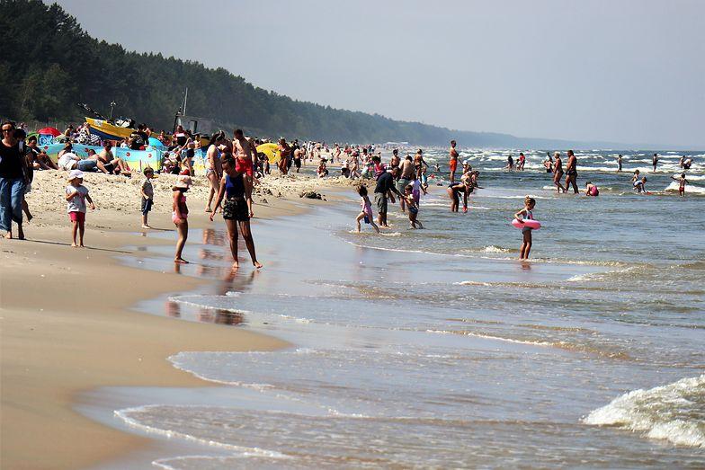 Dzik na plaży w Międzyzdrojach. Turyści przerażeni