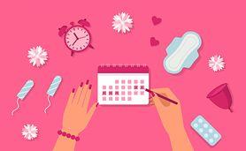 Cykl miesiączkowy – charakterystyka, dni płodne i niepłodne, fazy