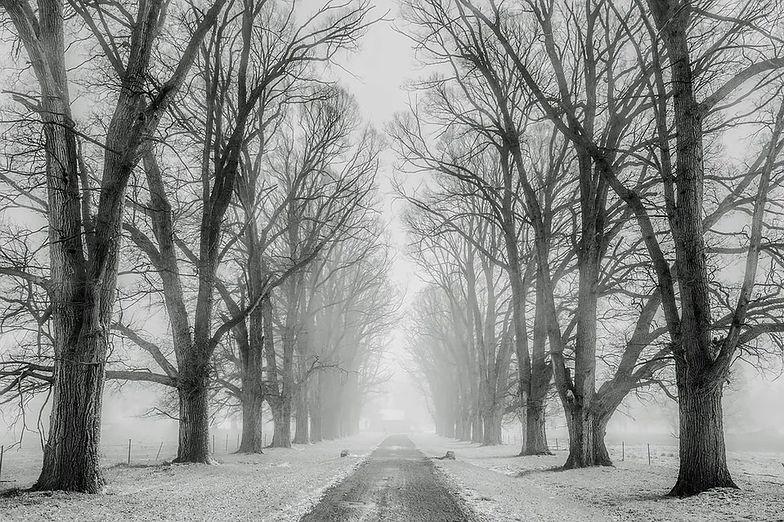 Kiedy spadnie śnieg? Zima nadchodzi! Długoterminowa prognoza pogody