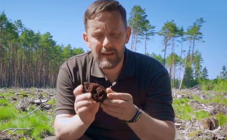 Eksperci ostrzegają. Wiosną w lesie czyha śmiertelne niebezpieczeństwo