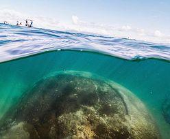 Niesamowite odkrycie. Kolos ukrywał się w morzu ponad 400 lat