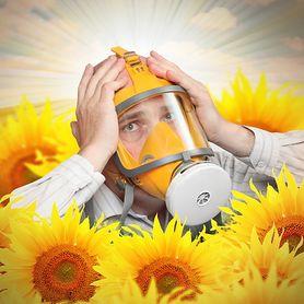 Poznaj 5 mitów na temat alergii