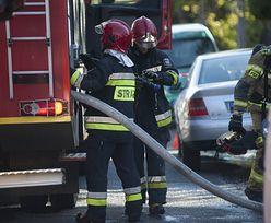 Wielki gest Polaków w zbiórce Biebrzańskiego Parku Narodowego. Przekazali 3,5 mln zł na rzecz strażaków